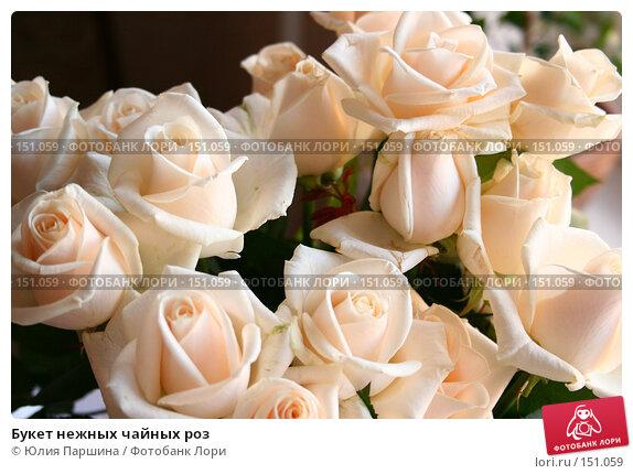 Букет нежных чайных роз, фото № 151059, снято 11 сентября 2007 г. (c) Юлия Паршина / Фотобанк Лори