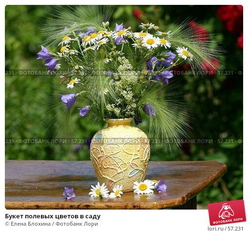Букет полевых цветов в саду, фото № 57231, снято 24 июня 2007 г. (c) Елена Блохина / Фотобанк Лори