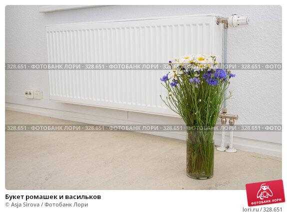 Букет ромашек и васильков, фото № 328651, снято 13 июня 2008 г. (c) Asja Sirova / Фотобанк Лори