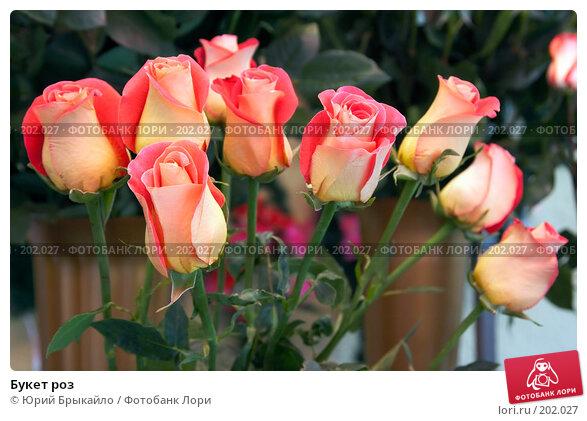 Купить «Букет роз», фото № 202027, снято 3 февраля 2008 г. (c) Юрий Брыкайло / Фотобанк Лори