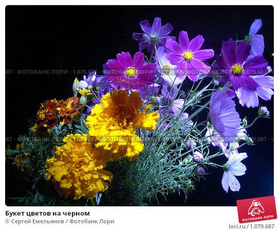 Купить «Букет цветов на черном», фото № 1079687, снято 1 сентября 2009 г. (c) Сергей Емельянов / Фотобанк Лори