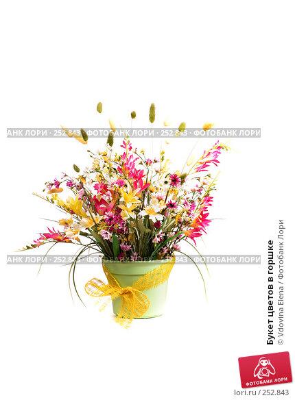 Букет цветов в горшке, фото № 252843, снято 27 февраля 2008 г. (c) Vdovina Elena / Фотобанк Лори