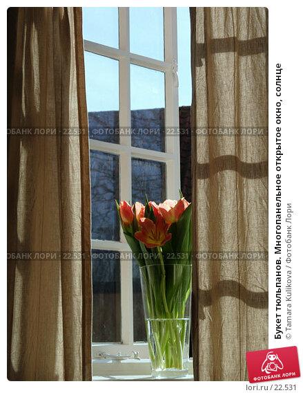 Букет тюльпанов. Многопанельное открытое окно, солнце, фото № 22531, снято 11 марта 2007 г. (c) Tamara Kulikova / Фотобанк Лори