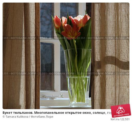 Букет тюльпанов. Многопанельное открытое окно, солнце, горизонтальный формат, фото № 22551, снято 11 марта 2007 г. (c) Tamara Kulikova / Фотобанк Лори