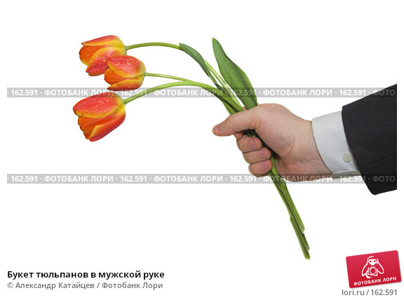 Купить «Букет тюльпанов в мужской руке», фото № 162591, снято 25 апреля 2007 г. (c) Александр Катайцев / Фотобанк Лори