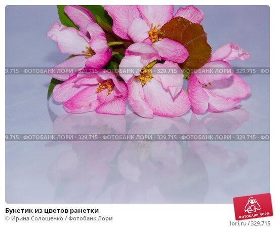 Букетик из цветов ранетки, фото № 329715, снято 30 мая 2008 г. (c) Ирина Солошенко / Фотобанк Лори