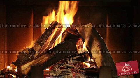 Купить «Burning Wood In The Fireplace», видеоролик № 27906063, снято 30 ноября 2013 г. (c) Алексей Кузнецов / Фотобанк Лори