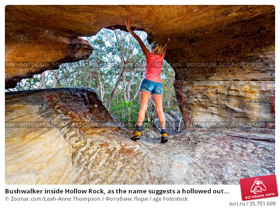 Bushwalker inside Hollow Rock, as the name suggests a hollowed out... Стоковое фото, фотограф Zoonar.com/Leah-Anne Thompson / age Fotostock / Фотобанк Лори