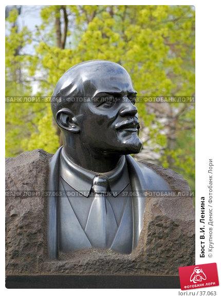 Купить «Бюст В.И. Ленина», фото № 37063, снято 29 марта 2007 г. (c) Крупнов Денис / Фотобанк Лори