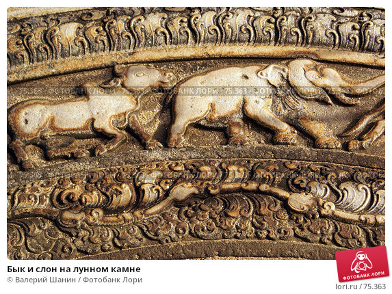 Купить «Бык и слон на лунном камне», фото № 75363, снято 27 мая 2007 г. (c) Валерий Шанин / Фотобанк Лори