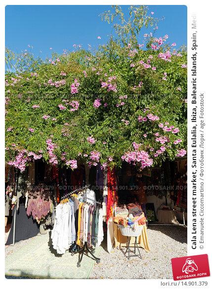 Купить «Cala Lena street market, Santa Eulalia, Ibiza, Balearic Islands, Spain, Mediterranean, Europe.», фото № 14901379, снято 19 июня 2018 г. (c) age Fotostock / Фотобанк Лори