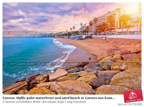 Cannes. Idyllic palm waterfront and sand beach in Cannes sun haze... Стоковое фото, фотограф Zoonar.com/Dalibor Brlek / easy Fotostock / Фотобанк Лори