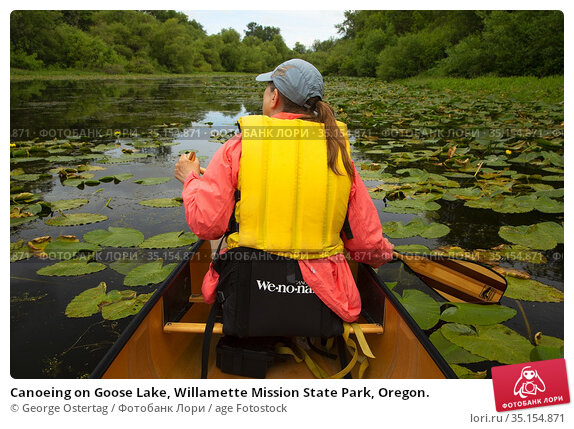 Canoeing on Goose Lake, Willamette Mission State Park, Oregon. Стоковое фото, фотограф George Ostertag / age Fotostock / Фотобанк Лори