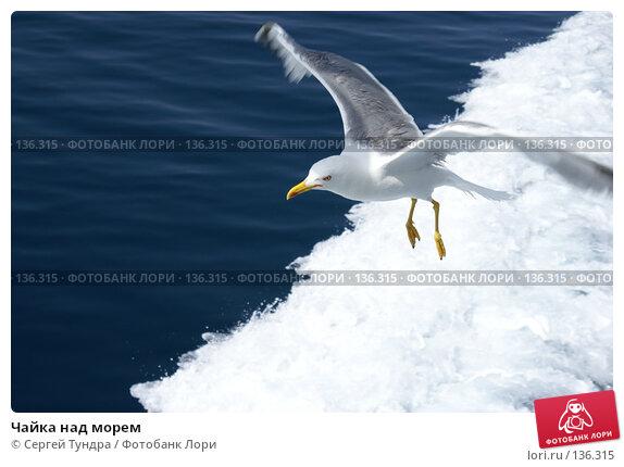 Чайка над морем, фото № 136315, снято 18 декабря 2007 г. (c) Сергей Тундра / Фотобанк Лори