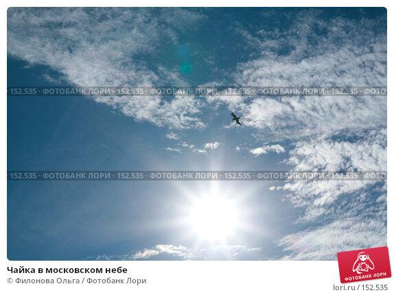 Чайка в московском небе, фото № 152535, снято 27 августа 2007 г. (c) Филонова Ольга / Фотобанк Лори