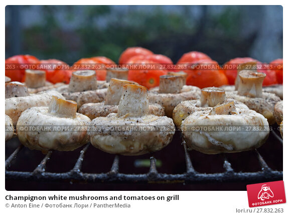 Купить «Champignon white mushrooms and tomatoes on grill», фото № 27832263, снято 20 февраля 2018 г. (c) PantherMedia / Фотобанк Лори