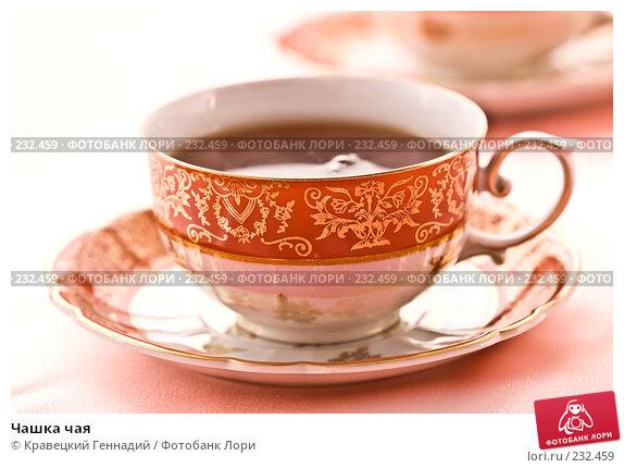 Купить «Чашка чая», фото № 232459, снято 5 декабря 2005 г. (c) Кравецкий Геннадий / Фотобанк Лори