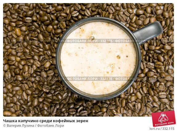 Купить «Чашка капучино среди кофейных зерен», фото № 332115, снято 22 июня 2008 г. (c) Валерия Потапова / Фотобанк Лори