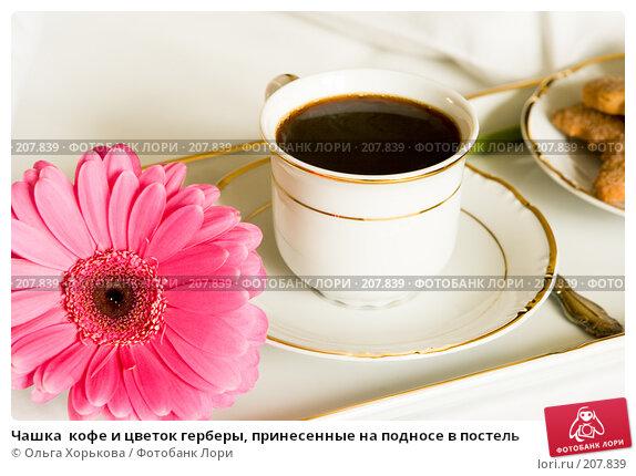 Чашка  кофе и цветок герберы, принесенные на подносе в постель, фото № 207839, снято 14 февраля 2008 г. (c) Ольга Хорькова / Фотобанк Лори