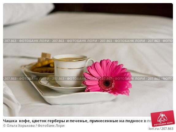 Чашка  кофе, цветок герберы и печенье, принесенные на подносе в постель, фото № 207863, снято 14 февраля 2008 г. (c) Ольга Хорькова / Фотобанк Лори