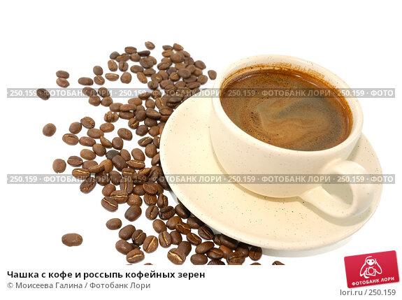 Чашка с кофе и россыпь кофейных зерен, фото № 250159, снято 21 октября 2007 г. (c) Моисеева Галина / Фотобанк Лори