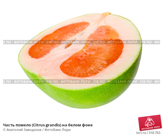 Часть помело (Citrus grandis) на белом фоне, фото № 318763, снято 3 февраля 2007 г. (c) Анатолий Заводсков / Фотобанк Лори