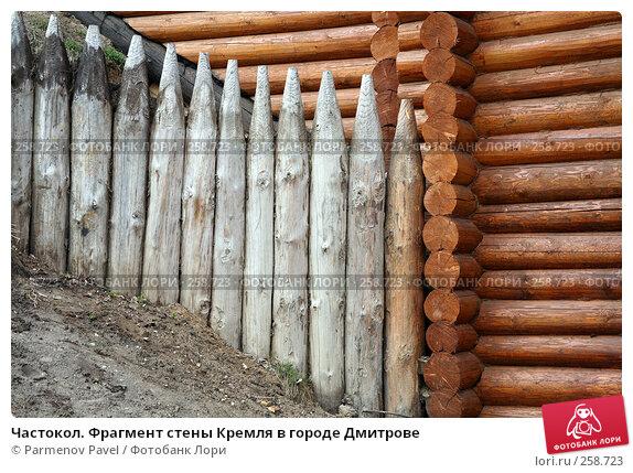 Купить «Частокол. Фрагмент стены Кремля в городе Дмитрове», фото № 258723, снято 19 апреля 2008 г. (c) Parmenov Pavel / Фотобанк Лори