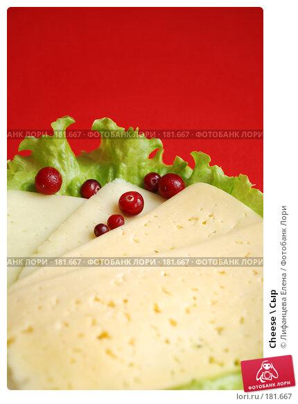 Cheese \ Сыр, фото № 181667, снято 19 января 2008 г. (c) Лифанцева Елена / Фотобанк Лори