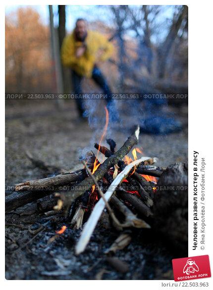 Развел в лесу фото 641-278