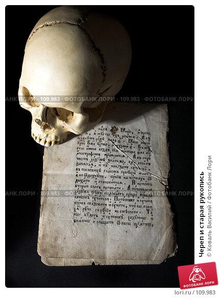 Череп и старая рукопись, фото № 109983, снято 26 февраля 2007 г. (c) Коваль Василий / Фотобанк Лори