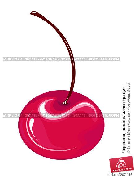 Черешня, вишня. иллюстрация, иллюстрация № 207115 (c) Татьяна Мельникова / Фотобанк Лори