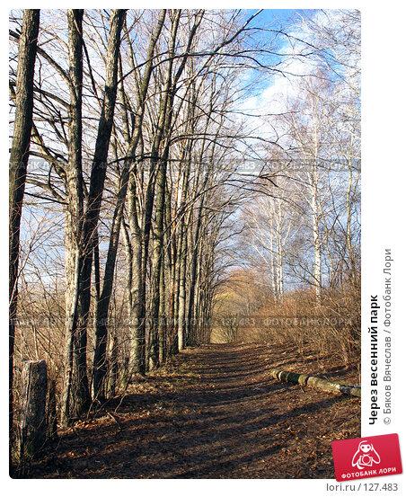 Через весенний парк, фото № 127483, снято 8 апреля 2007 г. (c) Бяков Вячеслав / Фотобанк Лори