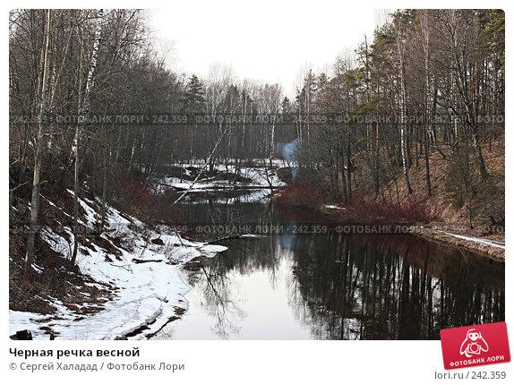 Купить «Черная речка весной», фото № 242359, снято 3 апреля 2008 г. (c) Сергей Халадад / Фотобанк Лори