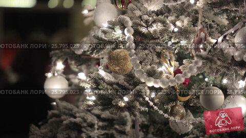 Christmass fir tree, видеоролик № 25795023, снято 14 марта 2016 г. (c) Алексей Макаров / Фотобанк Лори
