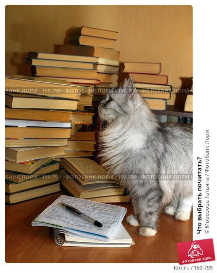 Что выбрать почитать?, фото № 150799, снято 11 мая 2007 г. (c) Морозова Татьяна / Фотобанк Лори