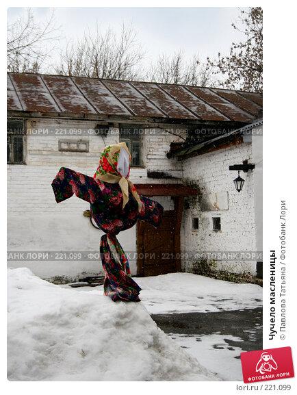 Купить «Чучело масленицы», фото № 221099, снято 8 марта 2008 г. (c) Павлова Татьяна / Фотобанк Лори