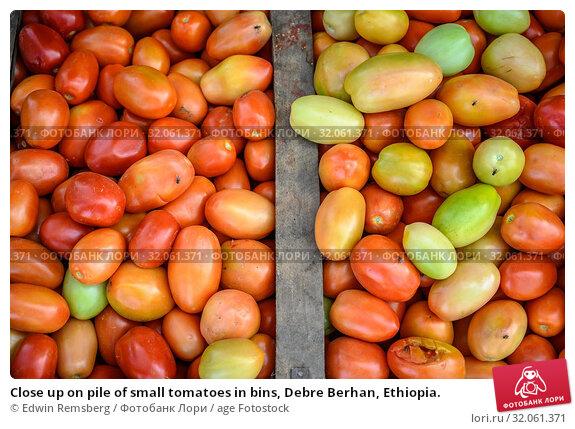 Close up on pile of small tomatoes in bins, Debre Berhan, Ethiopia. Стоковое фото, фотограф Edwin Remsberg / age Fotostock / Фотобанк Лори