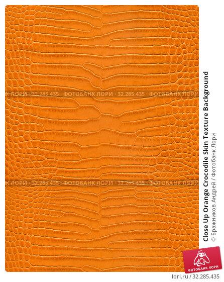 Close Up Orange Crocodile Skin Texture Background. Стоковое фото, фотограф Бражников Андрей / Фотобанк Лори