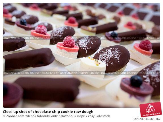 Close up shot of chocolate chip cookie raw dough. Стоковое фото, фотограф Zoonar.com/zdenek fotoduki kintr / easy Fotostock / Фотобанк Лори