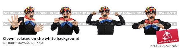 Купить «Clown isolated on the white background», фото № 29528907, снято 22 января 2015 г. (c) Elnur / Фотобанк Лори