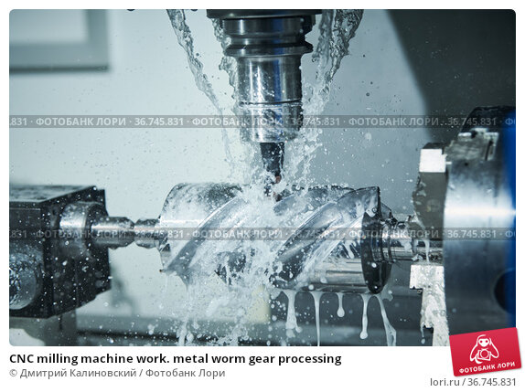 CNC milling machine work. metal worm gear processing. Стоковое фото, фотограф Дмитрий Калиновский / Фотобанк Лори