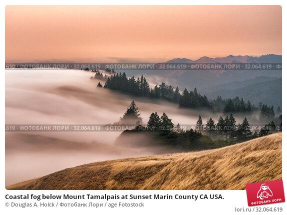 Coastal fog below Mount Tamalpais at Sunset Marin County CA USA. Стоковое фото, фотограф Douglas A. Holck / age Fotostock / Фотобанк Лори