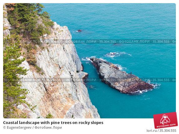 Coastal landscape with pine trees on rocky slopes. Стоковое фото, фотограф EugeneSergeev / Фотобанк Лори