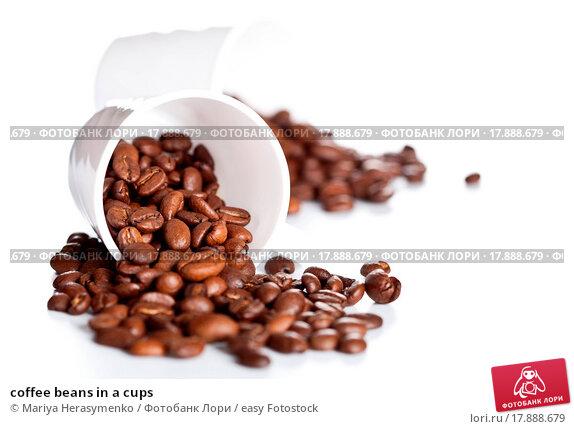 coffee and tea preference and addiction