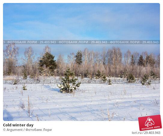 Купить «Cold winter day», фото № 29403943, снято 25 января 2013 г. (c) Argument / Фотобанк Лори