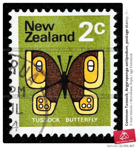Common Tussock, Argyropenga antipodum, postage stamp, New Zealand, 1970. (2010 год). Редакционное фото, фотограф Ivan Vdovin / age Fotostock / Фотобанк Лори