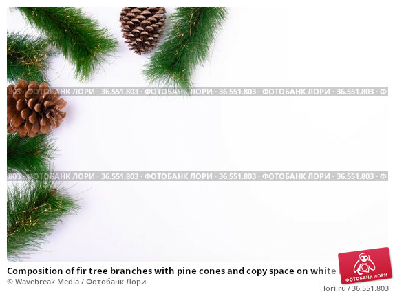 Composition of fir tree branches with pine cones and copy space on white background. Стоковое фото, агентство Wavebreak Media / Фотобанк Лори