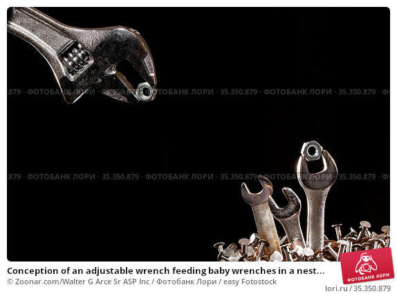 Conception of an adjustable wrench feeding baby wrenches in a nest... Стоковое фото, фотограф Zoonar.com/Walter G Arce Sr ASP Inc / easy Fotostock / Фотобанк Лори