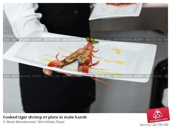 Купить «Cooked tiger shrimp oт plate in male hands», фото № 28170183, снято 26 января 2018 г. (c) Яков Филимонов / Фотобанк Лори