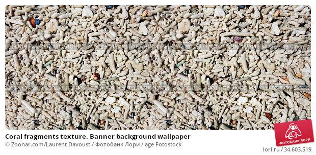 Coral fragments texture. Banner background wallpaper. Стоковое фото, фотограф Zoonar.com/Laurent Davoust / age Fotostock / Фотобанк Лори